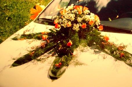 Firma na wesele: Kwiaciarnia Pod Muflonami Wałbrzych