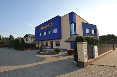 Firma na wesele: Sala bankietowa  Amadeusz Łódź