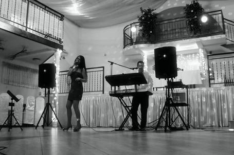 Firma na wesele: AWOKADO MUSIC