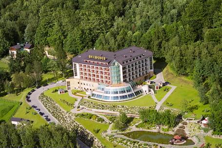 Firma na wesele: Hotel Belweder