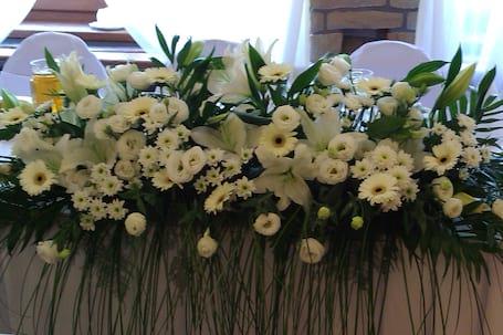 Firma na wesele: Maryka