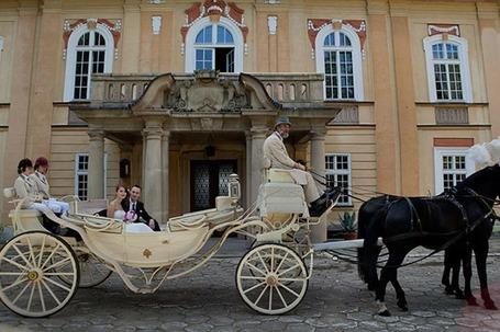 Firma na wesele: Pałac Żelazno