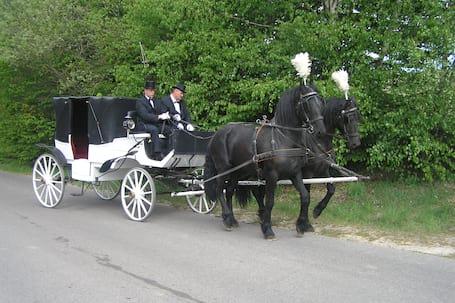 Firma na wesele: Stajnia Pod Klonem
