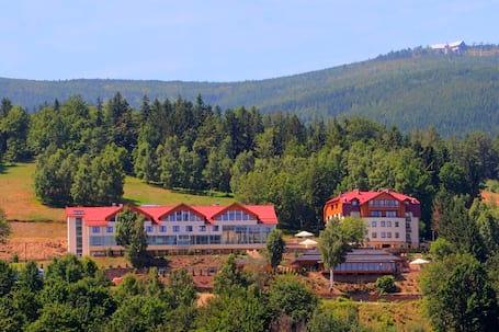 Firma na wesele: Hotel & Medi-SPA Biały Kamień****
