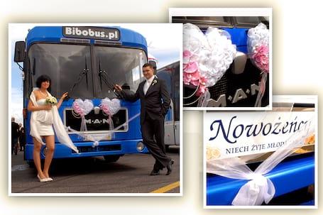 Firma na wesele: Bibobus