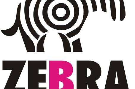 Firma na wesele: Zebra Studio Multimedialne