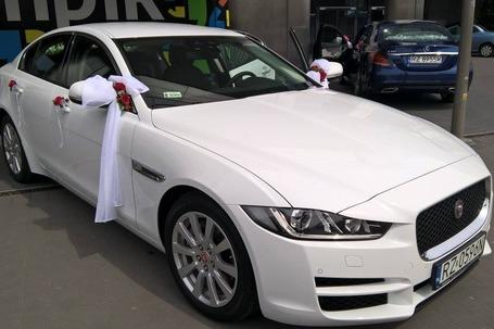 Firma na wesele: Jaguar