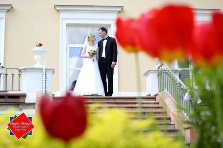 Firma na wesele: Magia Obrazu Paweł Jędras
