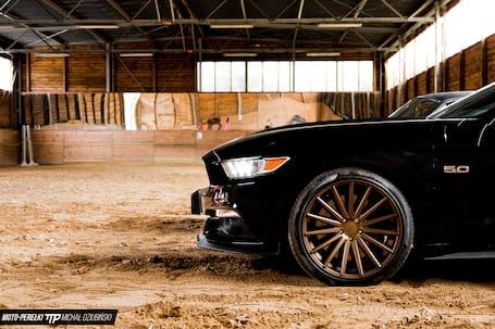 Firma na wesele: Auto do Ślubu Mustang 2015