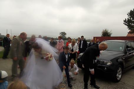 Firma na wesele: hotel Krasne