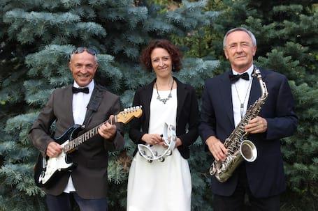 Firma na wesele: Alabaster-zespół muzyczny