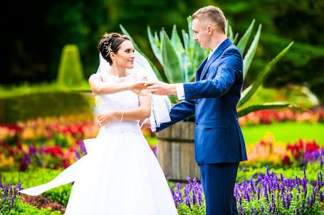 Firma na wesele: Studio Niebieski Ptak