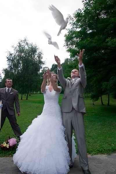 wypuszczanie gołąbków na ślubie
