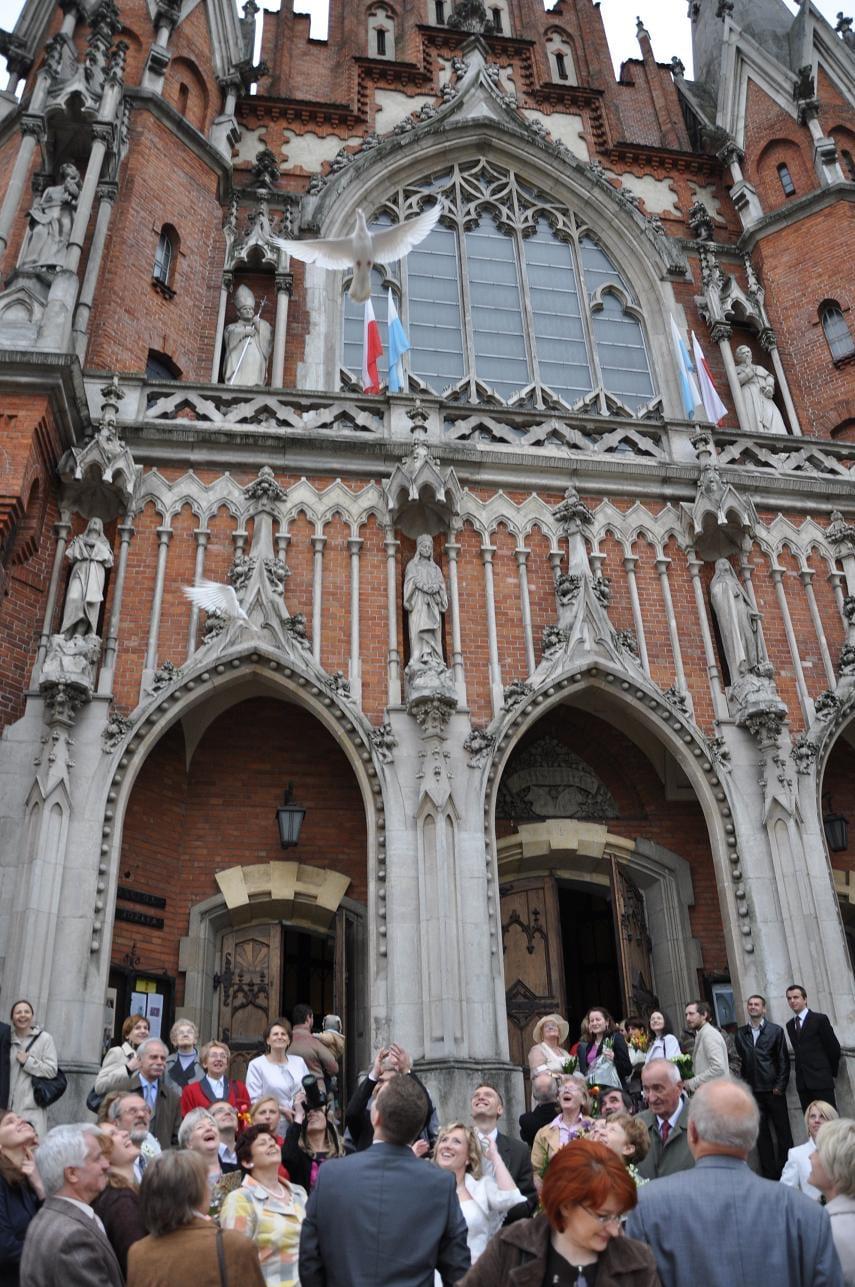 gołąbki na tle katedry