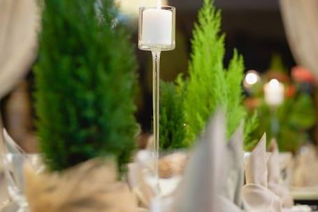 Firma na wesele: Sala Weselna Pod Platanem