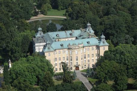 Firma na wesele: Zamek w Rydzynie