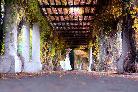 Firma na wesele: Primafoto studio fotografi i filmu
