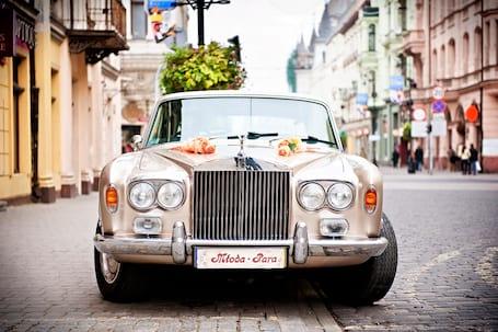Firma na wesele: autaslubne.info