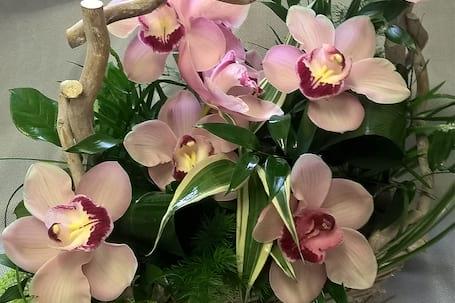 Firma na wesele: Kwiaciarnia i nie tylko