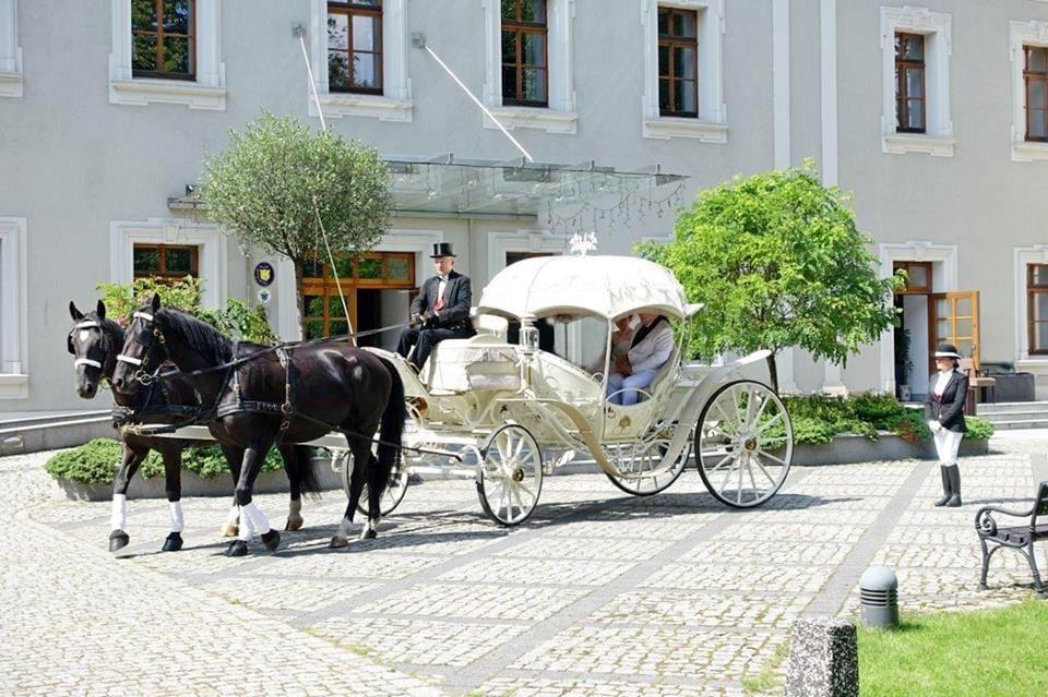 Hotel Zamek Lubliniec Lubliniec Sale Weselne Planujemywesele
