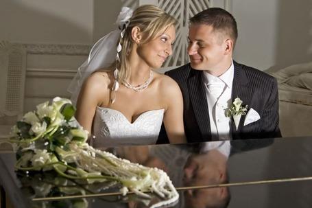 Firma na wesele: Alcomfilm